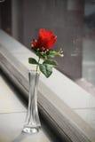 Flor plástica Imagem de Stock Royalty Free