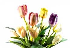 Flor plástica Foto de archivo libre de regalías