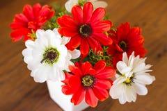 Flor plástica Fotos de Stock Royalty Free
