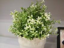Flor plástica Foto de Stock Royalty Free