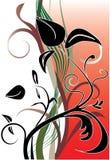 Flor preta Fotos de Stock Royalty Free