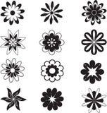 A flor preta, flores brancas, floresce o vetor, B branco Foto de Stock Royalty Free