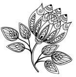Flor preto e branco bonita, desenho da mão Imagem de Stock Royalty Free