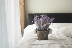 Flor púrpura de la lavanda Foto de archivo libre de regalías