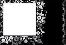 Flor quadro do fundo, elementos para o projeto, vetor Fotografia de Stock Royalty Free