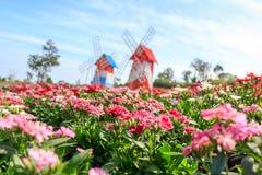 Flor que floresce no jardim com torre da turbina eólica Fotografia de Stock Royalty Free