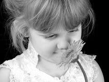 Flor que huele de la muchacha hermosa de cuatro años contra Backg negro Foto de archivo
