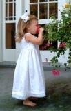 Flor que huele de la niña fotografía de archivo