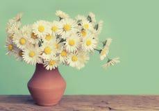 Flor retra de las margaritas Foto de archivo