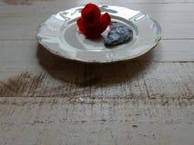 Flor roja con la cáscara de concha de peregrino azul Fotografía de archivo