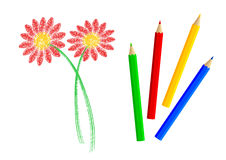 Flor roja con los lápices stock de ilustración