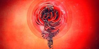 Flor roja de Digitaces Imágenes de archivo libres de regalías
