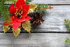 Flor roja de la Navidad en los tableros de madera Fotografía de archivo libre de regalías