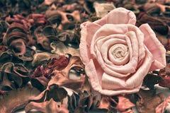 Flor romântica Imagens de Stock