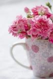 Flor rosada apacible en taza rosada. Fotos de archivo