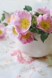 Flor rosada apacible en taza rosada Fotos de archivo
