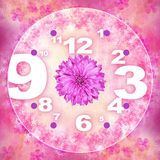 Flor rosada del gerbera del vintage para el fondo del reloj libre illustration