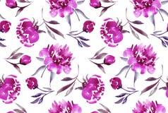 Flor rosada del peony Foto de archivo libre de regalías