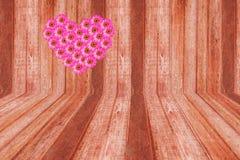 Flor rosada del zinnia del corazón y madera marrón Fotografía de archivo libre de regalías