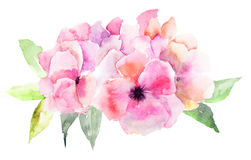 Flor rosada estilizada Fotografía de archivo libre de regalías