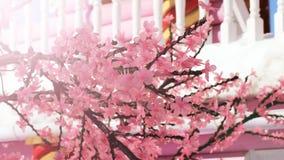 Flor rosada hermosa de Sakura de la flor de cerezo, y con el fondo del edificio de Japón del vintage imagen de archivo libre de regalías