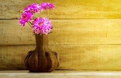 Flor rosada hermosa del foco selectivo en tarro en el fondo de madera Fotografía de archivo