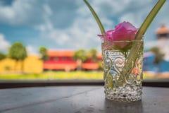 Flor rosada hermosa en el florero de cristal Foto de archivo libre de regalías
