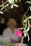Flor rosada que enmarca la figura de la señora mayor imágenes de archivo libres de regalías