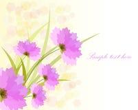 Flor rosada romántica Imagen de archivo
