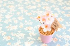 Flor rosado alegre artificial en pequeño pote de acero con día feliz Imagenes de archivo