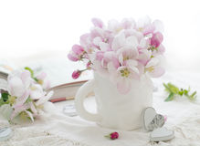 Flor rosado de la manzana Fotografía de archivo