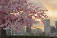 Flor rosado por la mañana Fotografía de archivo libre de regalías