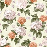 Flor roxa bonita da hortênsia ilustração royalty free