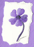 Flor roxa no fundo roxo Foto de Stock Royalty Free