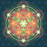 Flor sagrada IV de la geometría stock de ilustración