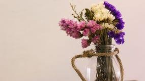 Flor seca Fotografía de archivo libre de regalías