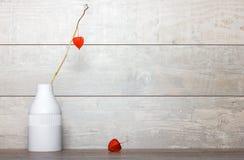 Flor seca anaranjada en un florero blanco Imagen de archivo libre de regalías