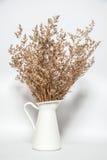 Flor seca no vaso branco Fotografia de Stock Royalty Free