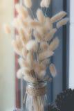 Flor secada no vaso, ramalhete de flores secadas no vaso Fotos de Stock Royalty Free
