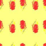 Flor sem emenda do verão do teste padrão da aquarela, imagem do vetor Fotografia de Stock