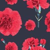 Flor sem emenda dos cravos do teste padrão Foto de Stock Royalty Free