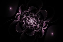 Flor simétrica do fractal abstrato foto de stock royalty free