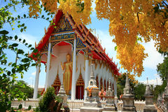 Flor sobre el templo Imagenes de archivo