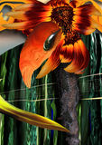 Flor solar. Fotografia de Stock Royalty Free