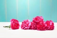 Flor Variegated imagem de stock royalty free