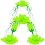 Flor verde A de la fuente Imagenes de archivo