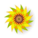 Flor verde y anaranjada Imagen de archivo