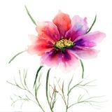 Flor vermelha bonita Fotos de Stock Royalty Free