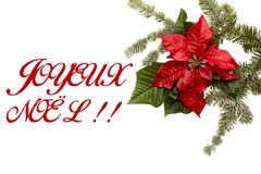 Flor vermelha da poinsétia com árvore de abeto e neve no fundo branco Cartão de Natal dos cumprimentos postcard christmastime Bra ilustração royalty free