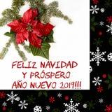 Flor vermelha da poinsétia com árvore de abeto e neve no fundo branco Cartão de Natal dos cumprimentos postcard christmastime Bra imagens de stock royalty free